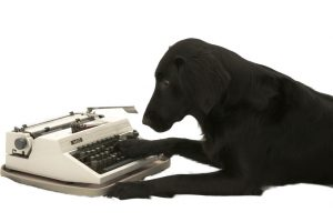 Black Dog, Typewriter