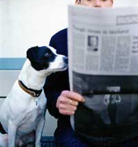 dog-reading-newspaper-FULL (1)