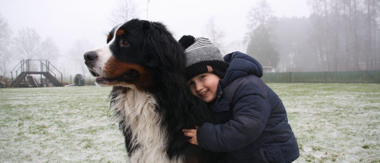 voor hond en mens